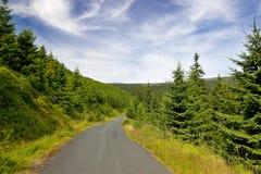 Estrada de floresta no valor máximo de concentração no trabalho do Koh Fotos de Stock Royalty Free