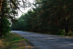 Estrada de floresta no valor máximo de concentração no trabalho do Koh Foto de Stock Royalty Free