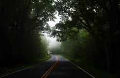 Estrada de floresta no valor máximo de concentração no trabalho do Koh Imagem de Stock Royalty Free