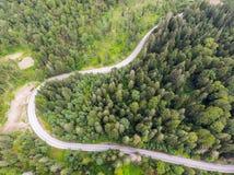 Estrada de floresta no verão, acima da vista foto de stock royalty free