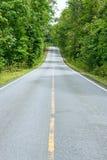 Estrada de floresta. Paisagem. Imagem de Stock