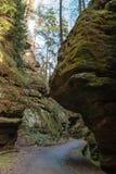 Estrada de floresta, Suíça saxão Fotos de Stock