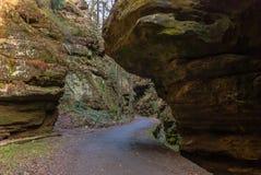 Estrada de floresta, Suíça saxão Imagem de Stock Royalty Free