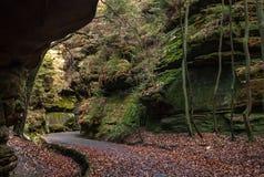 Estrada de floresta, Suíça saxão Imagem de Stock