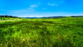 Estrada de Kamloops Princeton do alongthe das pastagem no Columbia Britânica, imagem de stock royalty free