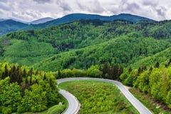 Estrada de laço na floresta da mola Imagem de Stock
