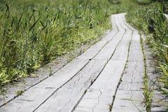 Estrada de madeira Imagem de Stock Royalty Free