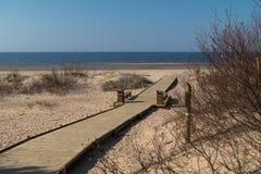 Estrada de madeira nova que conduz da floresta da duna da praia com os pinhos e o branco enviados ao golfo do mar B?ltico - Vecak fotografia de stock royalty free