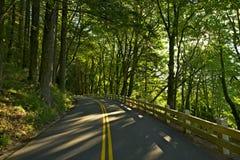 Estrada de Oregon E.U. 30 Imagem de Stock Royalty Free