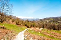 Estrada de passeio às montanhas nevado em vales verdes Imagens de Stock