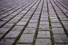 Estrada de passeio feita de pedras de pavimentação do cimento foto de stock