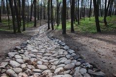 Estrada de pedra imagem de stock