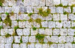 Estrada de pedra com grama verde nas rachaduras fotografia de stock royalty free