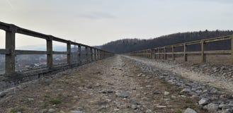 Estrada de pedra na floresta imagem de stock