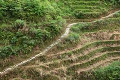 Estrada de pedra no terraço de Longji, Guilin Fotos de Stock