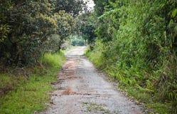 Estrada de terra fotos de stock royalty free