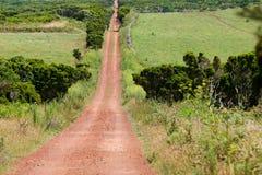 Estrada de terra Imagem de Stock Royalty Free