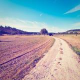 Estrada de terra Foto de Stock