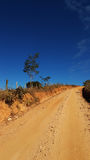 Estrada de Terra Photographie stock