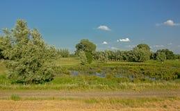 Estrada de terra ao longo de um lago da turfa em árvores de uma paisagem do pantanal no reerve da natureza de Kalkense Meersen, F Fotos de Stock Royalty Free