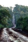 Estrada de terra através da selva Imagens de Stock Royalty Free