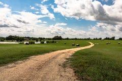 Estrada de terra através do campo foto de stock royalty free