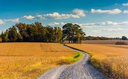 Estrada de terra através dos campos de exploração agrícola no Condado de York rural, Pensilvânia Foto de Stock Royalty Free