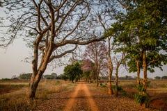 Estrada de terra bonita com luz surpreendente Imagem de Stock Royalty Free