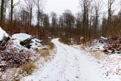 Estrada de terra coberto de neve Fotografia de Stock