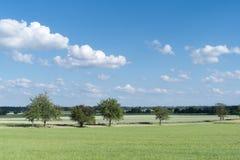 Estrada de terra com as árvores em Baviera Imagens de Stock Royalty Free