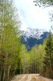 Estrada de terra da montanha foto de stock royalty free