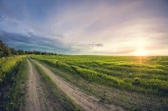 Estrada de terra da paisagem em um campo de sementeira no por do sol imagem de stock