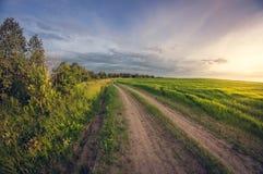 Estrada de terra da paisagem em um campo de sementeira no por do sol foto de stock