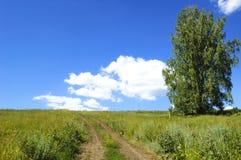 Estrada de terra do campo Céu azul e nuvens Imagem de Stock