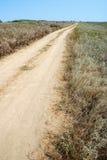 Estrada de terra do estepe Imagem de Stock Royalty Free