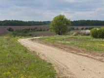Estrada de terra do país Imagem de Stock