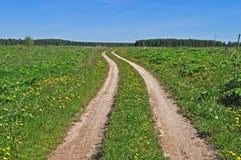 Estrada de terra do país no prado Fotografia de Stock