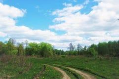 Estrada de terra e floresta Fotos de Stock Royalty Free