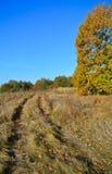Estrada de terra em um prado no outono imagem de stock royalty free