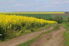 Estrada de terra entre os campos Foto de Stock