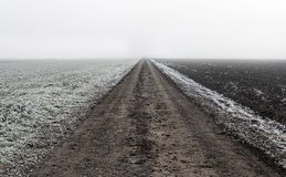Estrada de terra infinita na natureza imagem de stock royalty free