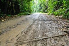 Estrada de terra molhada Fotos de Stock Royalty Free