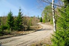 Estrada de terra na floresta Imagens de Stock