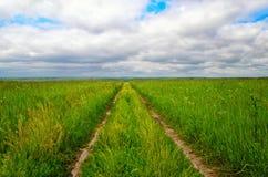 Estrada de terra no campo verde ao horizonte Fotografia de Stock