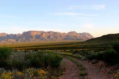 Estrada de terra no parque nacional de curvatura grande Fotografia de Stock