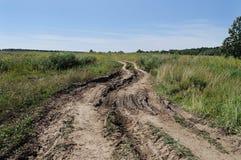 Estrada de terra no prado Fotos de Stock Royalty Free