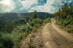 Estrada de terra no terreno montanhoso coberto por arbustos e por ?rvores imagem de stock