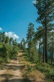 Estrada de terra no terreno montanhoso coberto por arbustos e por ?rvores fotos de stock