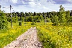 Estrada de terra nos campos, em um dia quente de junho fotografia de stock royalty free