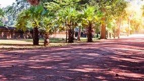 Estrada de terra que estica através da selva cambojana ao lado do castelo Baixa de Siem Reap, Cambodia Paisagem em 3Sudeste Asiát Fotos de Stock